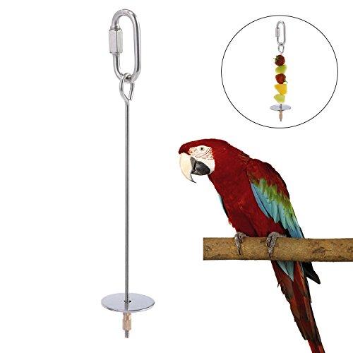 KOBWA Parrot Uccello spiedini di Frutta Verdura in Acciaio Inox Treat Holder Foraggiamento Giocattolo Strumento di Cura degli Animali, 16x3x1.5 cm