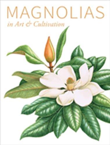 Magnolias -
