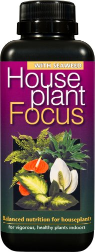 houseplant-focus-balanced-liquid-concentrated-fertiliser-500ml