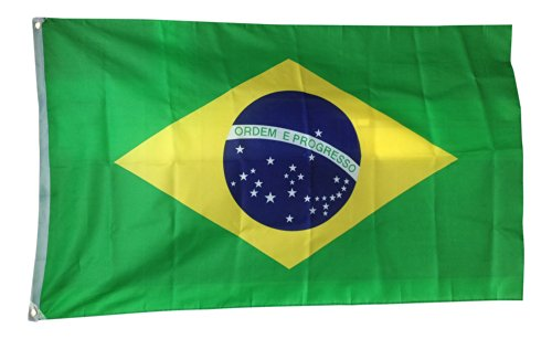 Brazil World Cup Flag