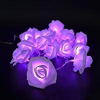 Denk Nova catena luminosa LED/haifischtech qfix alle rose/luce (rosa o viola)/funzionamento a batteria/natale festa matrimonio/interno esterno DEKRA zione, lilla, 30