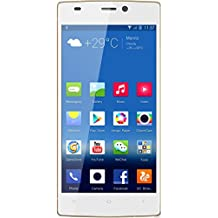 Gionee Elife S5.5 (White)