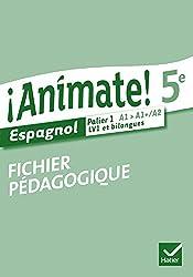Animate Espagnol 5e éd. 2014 - Fichier pédagogique