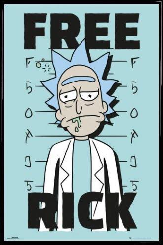 Rick Y Morty Póster con Marco (Plástico) - Free Rick (91 x 61cm)