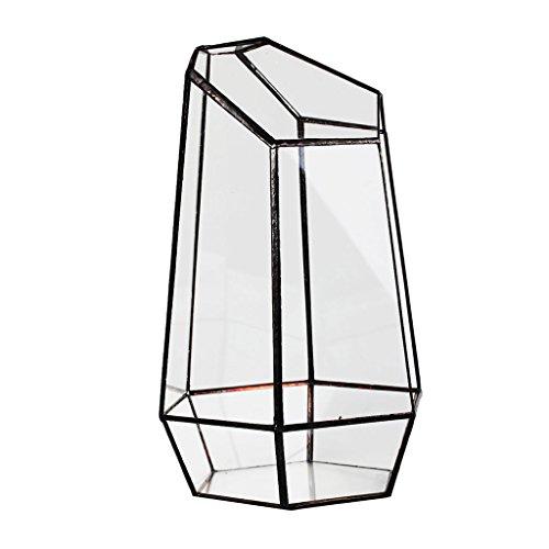 Glas Terrarium Hexagonal Fee Miniatur-Gartenhaus Gewaechshaus Pflanzbehaelter 12x10x19cm