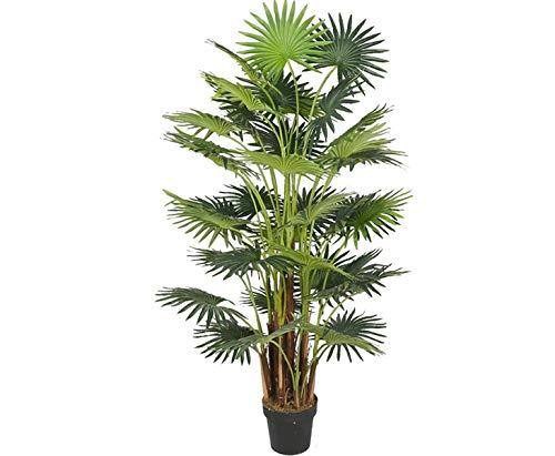 Kunstpalme Areca mit 25 Palmwedel Höhe 160cm - künstliche Palme - künstliche Blumen Kunstblumen Dekoblumen Kunstpflanzen