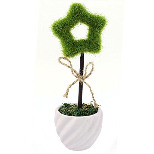 planta-en-forma-de-estrella-de-cinco-puntas-hueco-artificial-bonsai-de-la-decoracion-de-escritorio