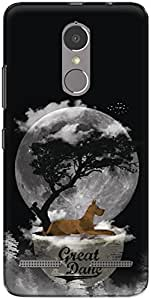 The Racoon Lean printed designer hard back mobile phone case cover for Lenovo K6 Power. (Scoobilici)