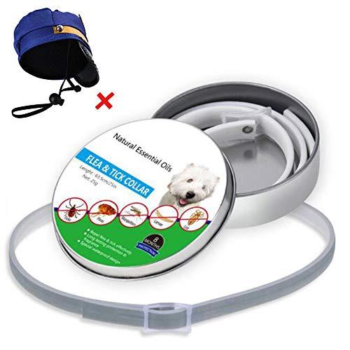 YCGJ Floh- und Zeckenhalsbänder für Hunde Katzen - Schutz für 8 Monate - Verstellbare 23,6-Zoll-Länge für kleine, mittelgroße Haustiere,B