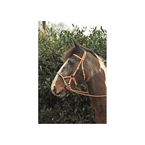 Trensenzaum ohne Trense hellbraun Pony