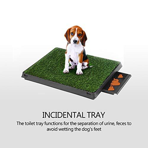 Cocoarm Haustiertoilette Rasen Pet Potty Indoor Welpentoilette Töpfchen Gras Simulation Rasen Restroom 2 Schichten mit Tablett Training für Hunde Katze (60x48x6cm)