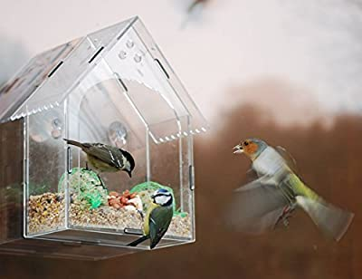 Garden mile® Unique Clear Hanging Perspex Squirrel proof Window Bird Feeder glass viewing bird feeding station table seed or peanut with hanging suction cups by Garden Mile®
