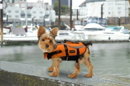 designer-pet-saver-life-jacket-x-small-colors-vary-by-kyjen