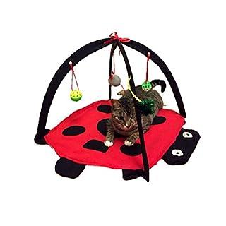 ueetek Spielzeug für Katzen mit Kugeln und Teppich mit Druck von Marienkäfer Interaktives sprachstreams mit Katze