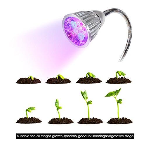 ampoules plantes achat vente de ampoules pas cher. Black Bedroom Furniture Sets. Home Design Ideas