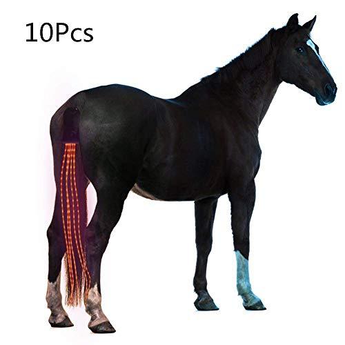 Arzja 10 Pezzi Coda di Cavallo USB A Pagamento Guidato Pettorina per Cavalli Equestre AllAperto Gli Sport Equitazione Coda Decorazione 100CmRosso