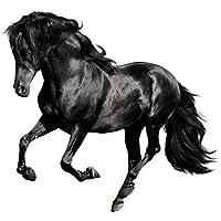 Pferd 19 x 24cm MagicGel Fensterbilder Fensterdeko