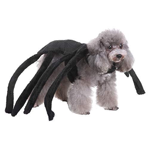 Angoter Hund Weihnachten Kostüme Kleidung Hundemantel Hundekleidung Für Kleine Hündchen - Herr Nudel Kostüm