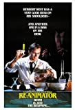 RE ANIMATOR – Imported Movie Wall Poster Print – 30CM X 43CM Brand New