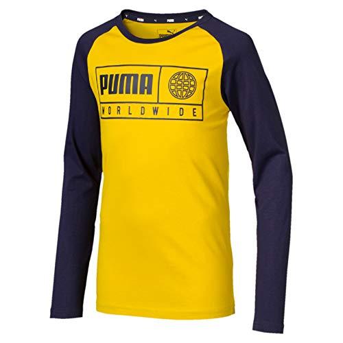 Long Sleeve Graphic Tee (Puma Jungen Alpha Graphic Longsleeve Tee B T-Shirt, Sulphur, 116)