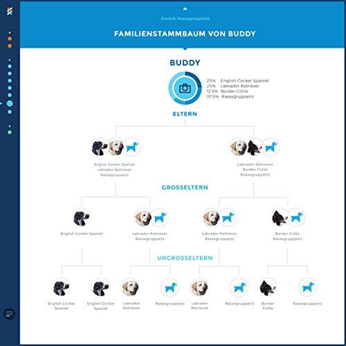Wisdom Panel 2.0 Hunde DNA Test