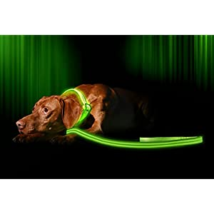 LED Dog Lead / Leash - USB Rechargeable - Your Dog Will Be More Visible & Safe - 6 Colors (Red, Blue, Green, Pink, Orange & Yellow) - Perfect To Use With Our Matching Illumiseen Collar (4 ft / 120 cm, Green) 4