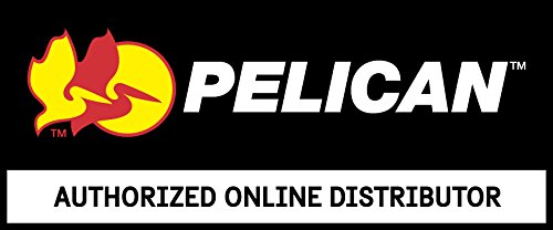 Pelican 1602 Schaumstoffset 2-teilig -