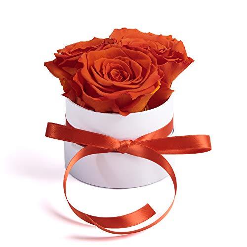 ROSEMARIE SCHULZ Heidelberg Rosenbox weiß rund Infinity Rose - Flowerbox 3 konservierte Rosen (Small, Weiß-Orange) - Pflegende Rose