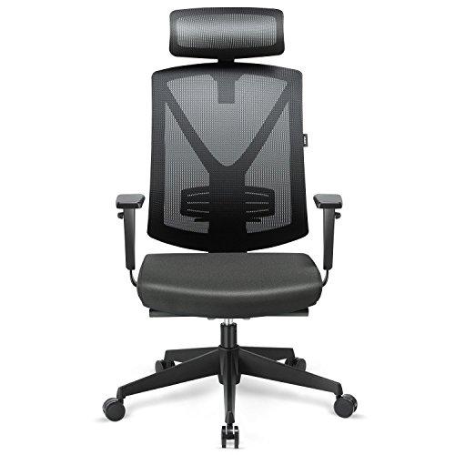 INTEY Bürostuhl Ergonomischer Schreibtischstuhl mit verstellbare Kopfstütze und Armlehnen, Höhenverstellung und Wippfunktion für Soho- oder Büroarbeit, Belastbar bis 150kg