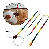 Vektenxi Premium-Qualität kleine Haustiere Leine, verstellbare Outdoor-Brust Führstrick Bunte 1,3 m lang für Harness Hamster Kaninchen Chinchilla Eichhörnchen Tierprodukte