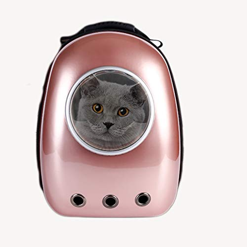 Komfort Sac-schaum (SAUWERAY Tragbare Doppelschulter-Weltraumtasche für Haustiere, dreidimensionale Dekompression aus gebürstetem Schaum und Erdbebenbeständigkeit)