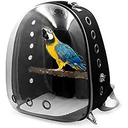 Mochila del loro Mochila del loro Portador de la mochila del viaje del pájaro Cápsula del espacio transparente con los agujeros de la rama para el uso al aire libre del loro del animal doméstico