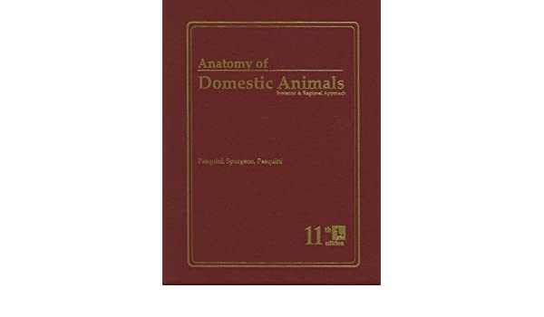 Buy An Anatomy of Domestic Animals: A Systematic and Regional ...