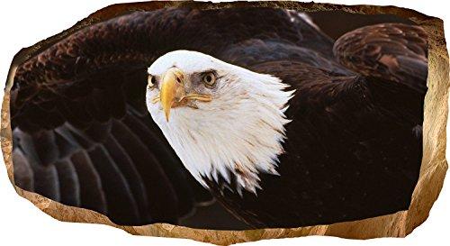 Startonight 3D Tapete Amerikanischer Adler, Wandmalerei Bild an der Wand Großformat Modern Muster Dekorative Kunst Wand 82 x 150 - Adler-raum-dekor
