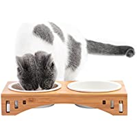 Petacc Katzennäpf Hundenäpf Keramik Hoch Futternäpfe für Katzen und Welpe mit Bambus Ständer (31*15.5*5.5cm)