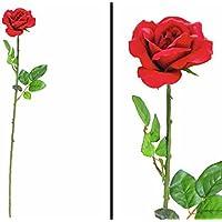 Suchergebnis Auf Amazon De Fur Langstielig Blumen Kunstblumen