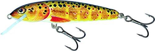 Salmo Minnow Wobbler Crankbait T Trout, 7cm schwimmend Braun Trout 7cm Long / 6g