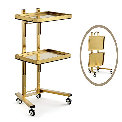 S-AIM Edelstahl-Schönheitssalon-Laufkatzen-Wagen, Beweglicher Speicherorganisator-Wagen, Faltbarer Gebrauchsinstrument-Wagen Für Klinik/Haus/Krankenhaus, Last 50kg
