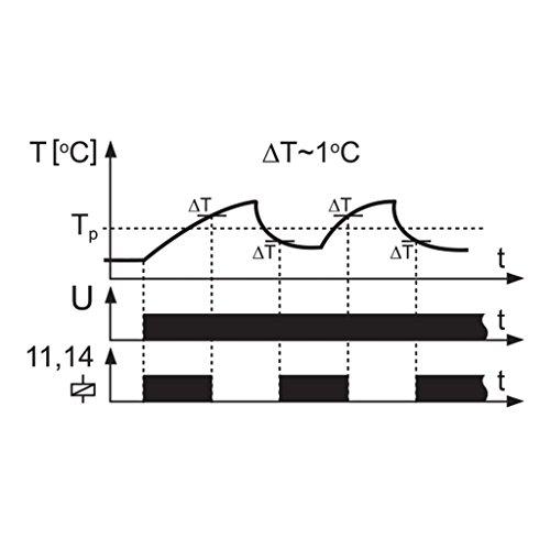 EXTA Temperaturregler, 1 Stück, RTM- 01 - 6