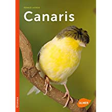 CD CANARIS HARZ TÉLÉCHARGER CHANT DE