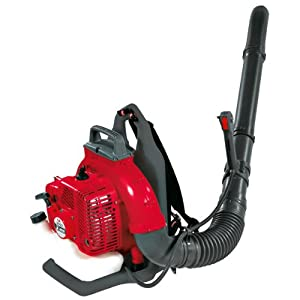 Efco SA 2062 61cc Petrol Backpack Blower