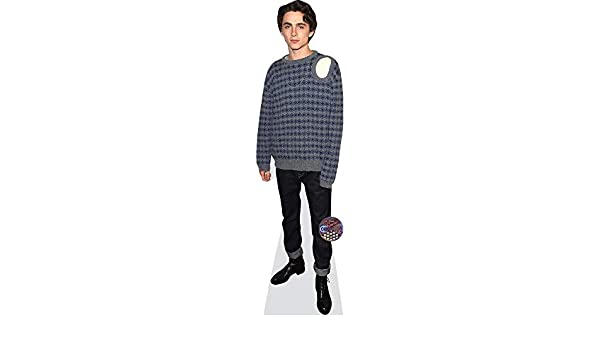 Timothee Chalamet a grandezza naturale Casual