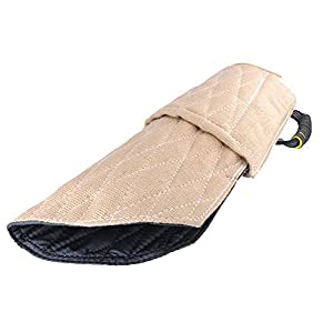 DAN Bite Sleeve Dog Training Protection des bras