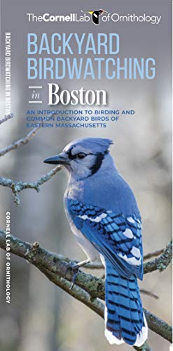 Backyard Birdwatching in Boston: An Introduction to Birding and Common Backyard Birds of Eastern Massachusetts (All About Birds Pocket Guide)