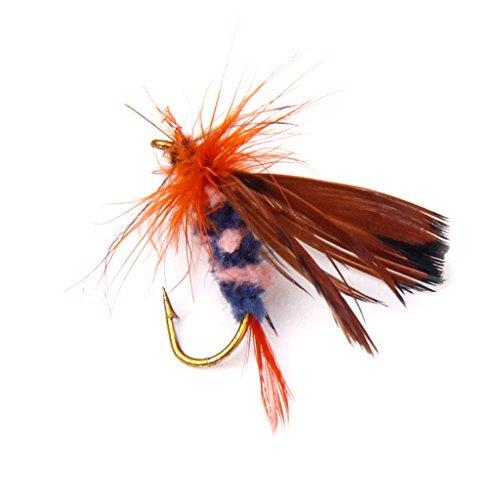 12Fliegen Fischen Trockenfliegen Köder Haken Künstliche Schmetterling