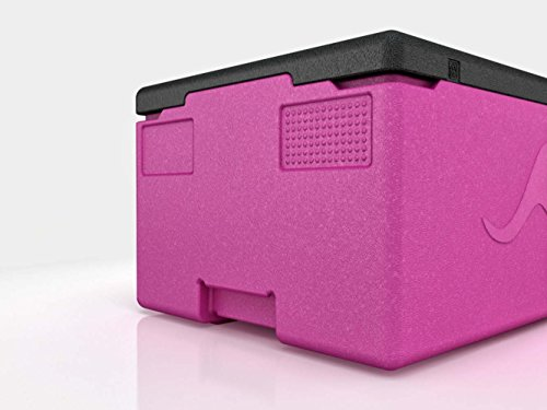 K Ngabox Professional Pr1217 With Integrated Handles In The Bottom Thermobox Particularly Lightweight And Easy To Clean Volume 39 L In 10 Different Colors Absolutely Leak Proof Thanks To Smooth Interior Surface
