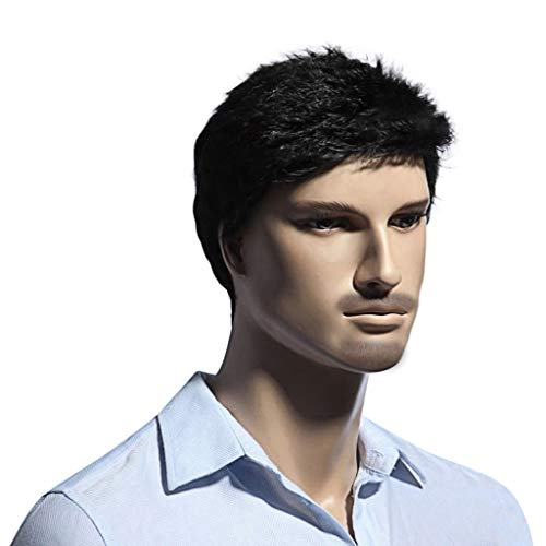 (❤️LCLrute 11 inch Kleines Wellig Kurze Dunkelbraun Herren Perücken Hitzebeständige Synthetische Haar Europäischen Männlichen Perücke (B))
