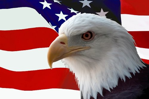 startonight-wall-art-canvas-american-eagle-on-the-flag-american-glow-in-the-dark-dual-view-surprise-