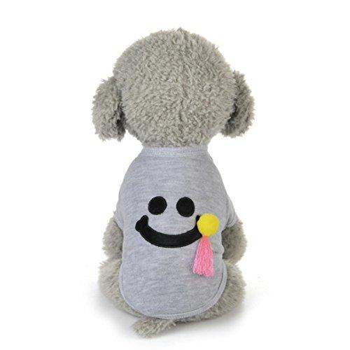 Tongshi Nuevo invierno caliente perro mascotas ropa linda sonrisa patrón traje (S, Gris)