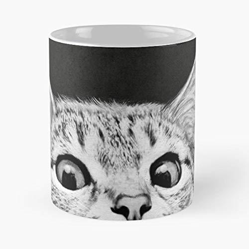 Bruce Springsteen E Street Band Thunder Road American Cat Kitten Black And White Animals Cute Funny Mug Coffee Mugs - Best 11 oz Kaffee-Becher - Tasse Kaffee Motive American White Plate